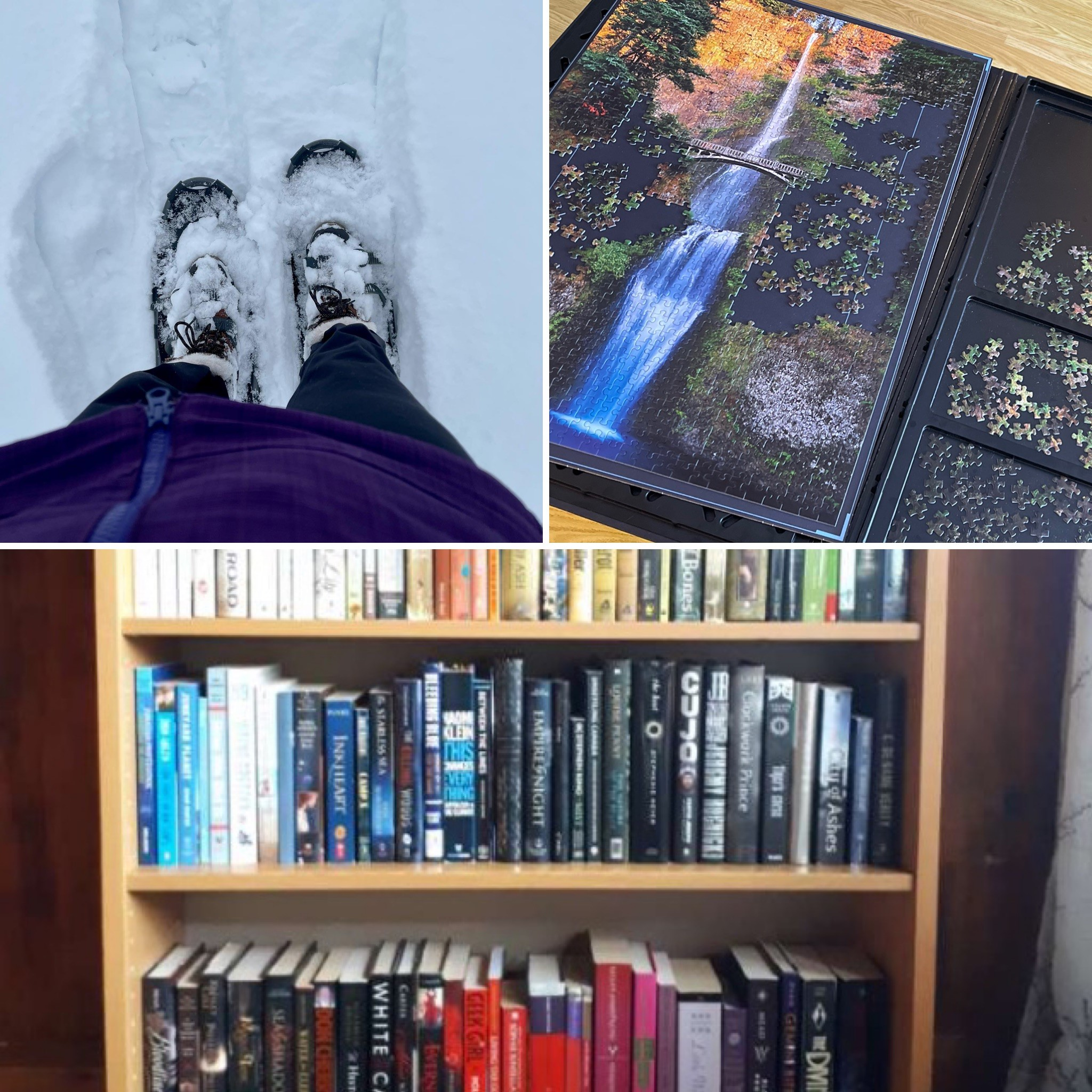 Showshoes, books, and a puzzle