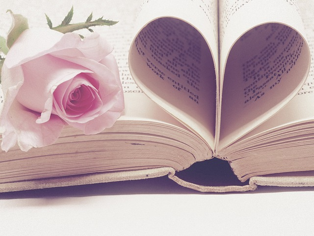 Pages of book form a heart and pink rose sits beside it.